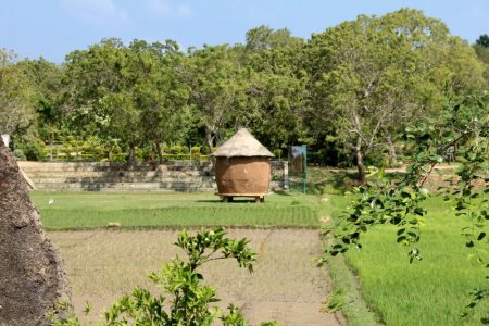Sri Lanka's South Coast rice storage