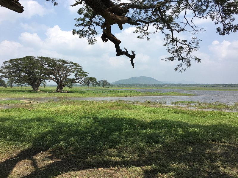 Tissawewa, one of Tissamaharama's artificial lakes