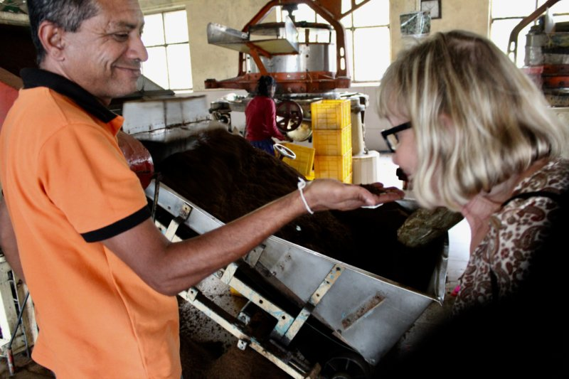 Trying tea, Liddesdale factory Sri Lanka