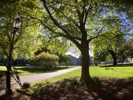 Trinity College garden