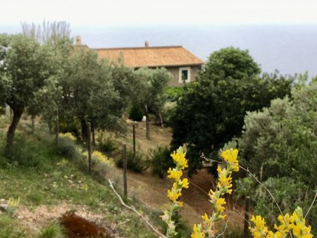 Hike from Port de Valldemossa to S'Estaca