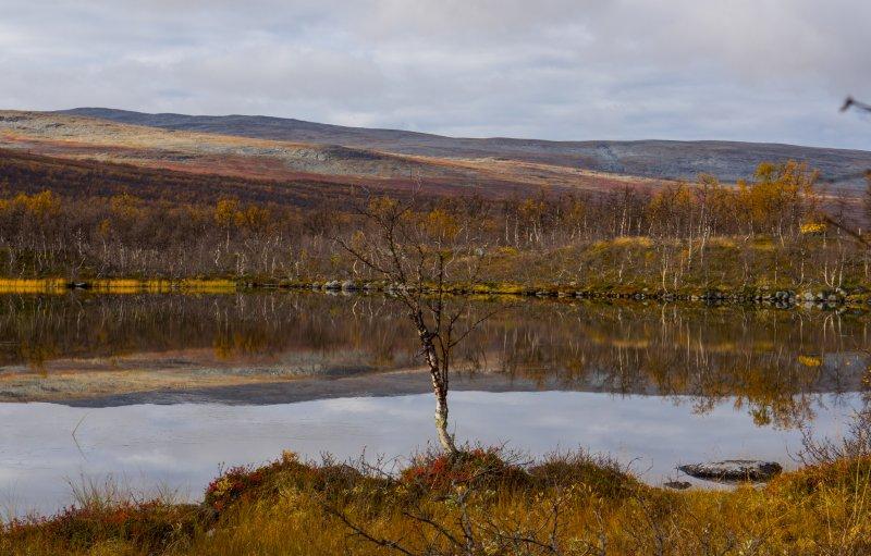 Malla Strict Nature Reserve