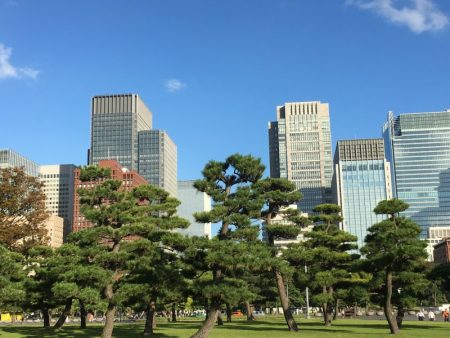 Imperial Palace Plaza and downtown Tokyo