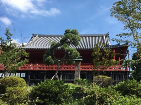 Kiyomizu Hall and Ueno Park gardens