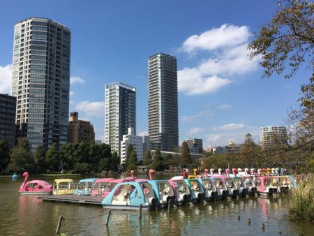 Ueno Park pedal boats