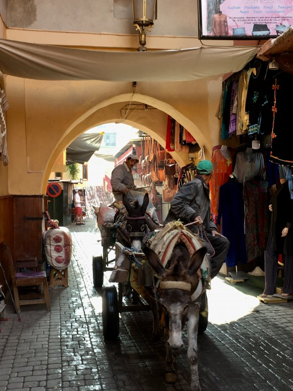 A man and donkey in the souks of Marrakech