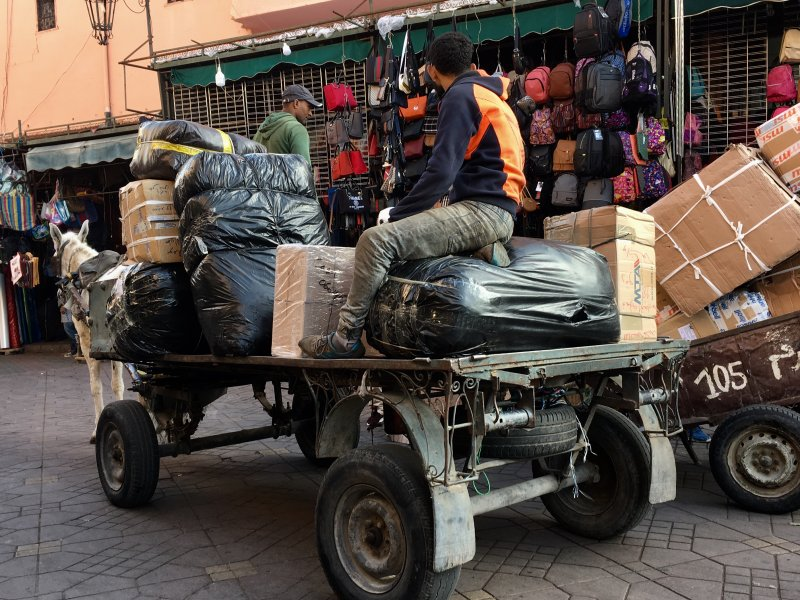 Donkey and carriage in Marrakech