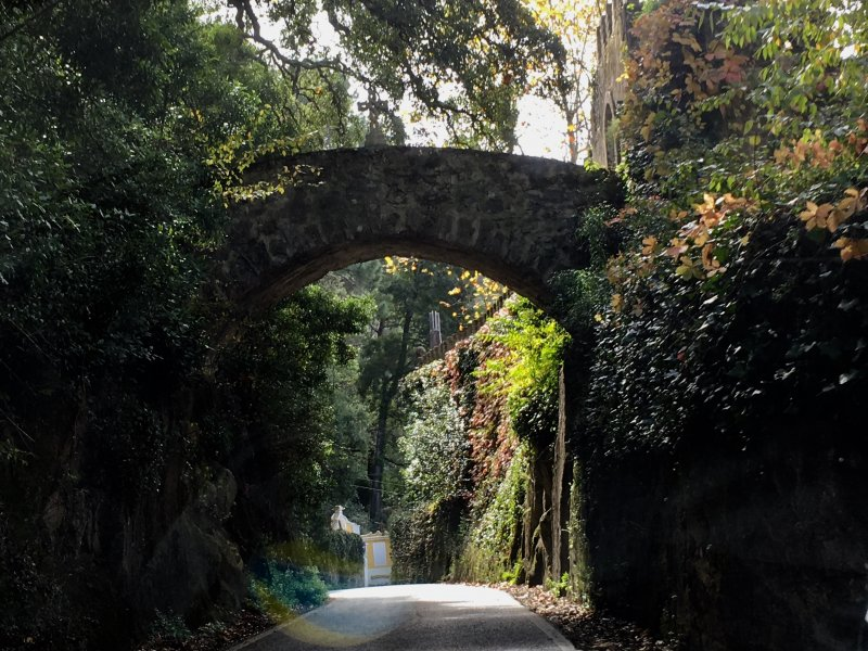 Road to the Palace of Pena and Moorish Castle, Sintra
