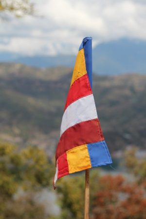Buddhist flag, World Peace Stupa