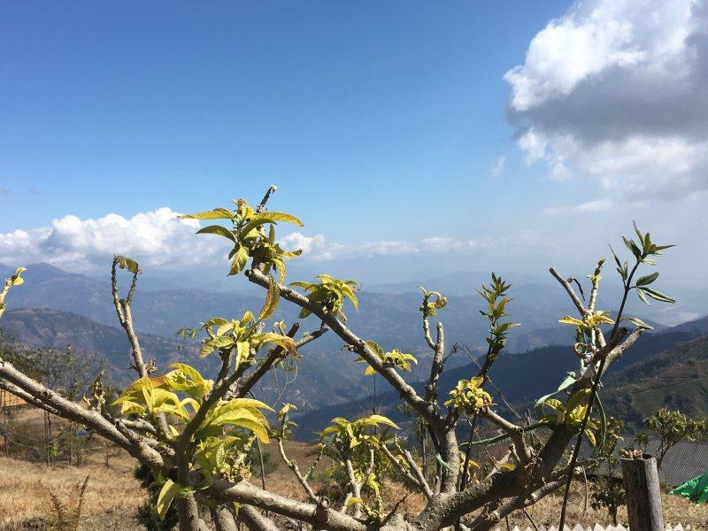 Shivapuri Nagarjun National Park valley view