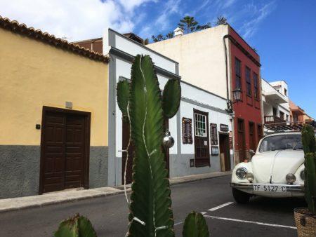 Garachico street and cactus
