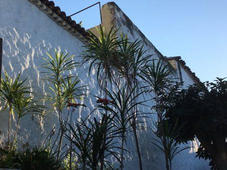 La Orotava house wall