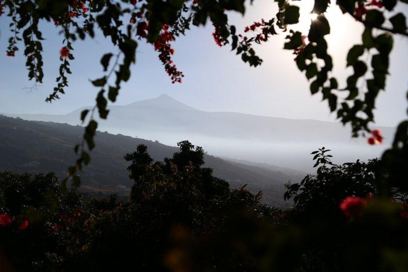 Mount Teide from La Orotava