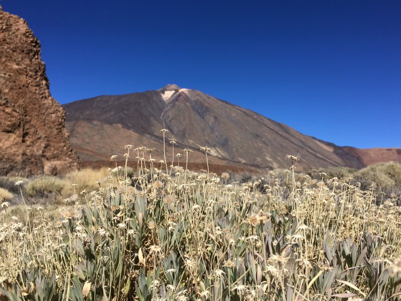 Mount Teide from the Roques de Garcia hike, Tenerife