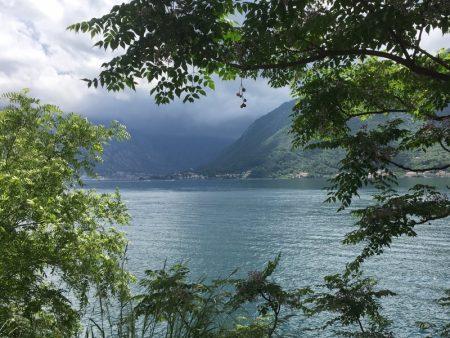 Boka Kotorska shoreline