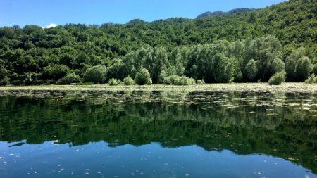 Rijeka Crnojevica riverside, Lake Skadar National Park