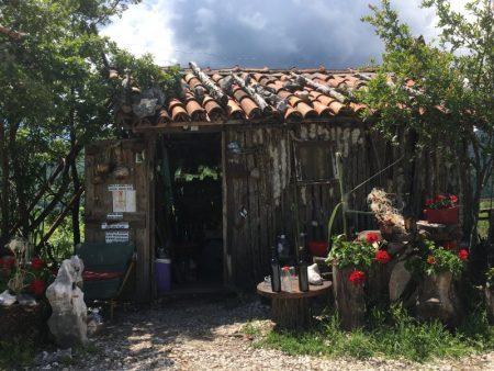 Roadside view from Cetinje to Rijeka Crnojevica