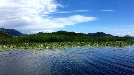 View of Skadar Lake