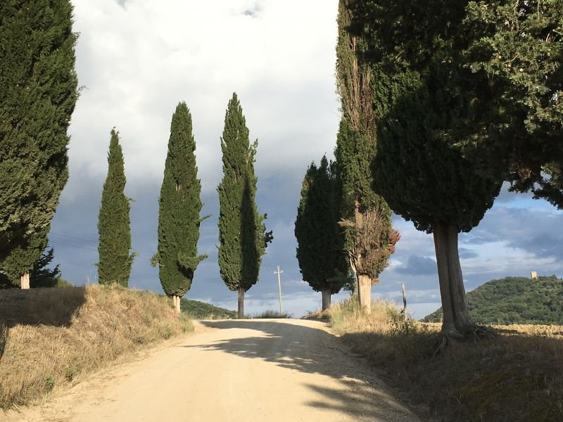 Touring Tuscan country roads by rental car